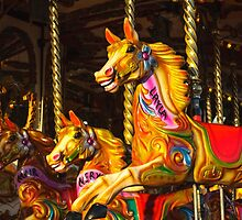 Carousel Fun by Heidi Stewart