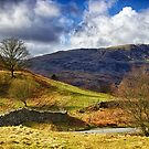 Cumbrian Landscape by Vicki Field