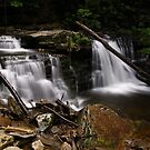 Cayuga Waterfalls-Ricketts Glen State Park by BigD