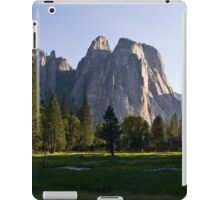 Meadow View in Yosemite 3 iPad Case/Skin