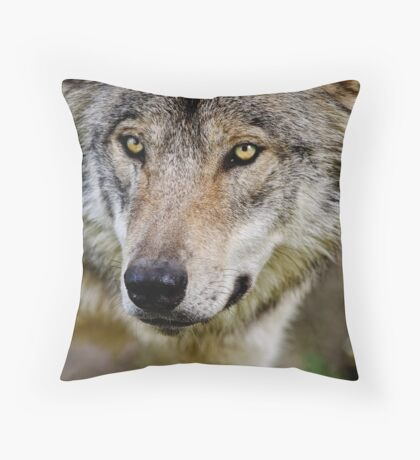 Timberwolf Portrait  Throw Pillow
