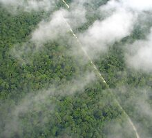 PNG jungle from 1200 feet in the air by Stretch72