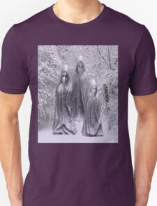 Statues in Winter T-Shirt