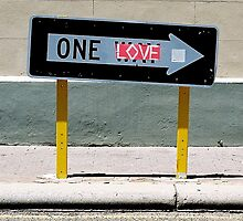 One love by James  Kerr