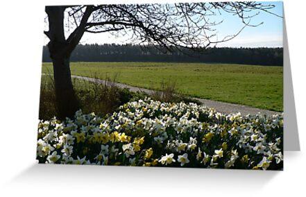 Spring Meadow Landscape - Roffey Park by Adrian S. Lock