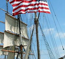 Old Glory, San Diego Harbor CA by Stephen Homer