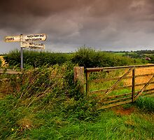 Signs Of A Wet Summer by Nigel Finn