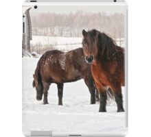 Winter Majesty iPad Case/Skin