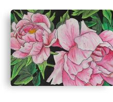 Peony Blooms Canvas Print