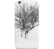 Winter Trees in Snow iPhone Case/Skin
