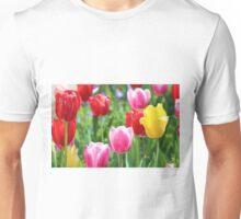 Pick A Color Unisex T-Shirt