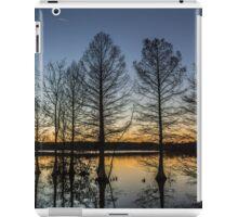 Cypress Silhouette iPad Case/Skin