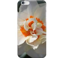 Blooming Double Daffodil  iPhone Case/Skin