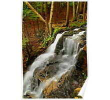 LOWER DUTCHMAN FALLS Poster