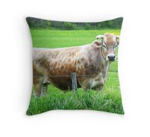 There Are Bulls, & Then There Are BULLS Throw Pillow