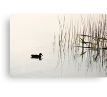 Peace and Simplicity Canvas Print
