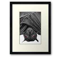 Be Afraid...I Eat Fruits & Lick Nectars! Framed Print