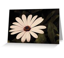 Contrasting Center Greeting Card