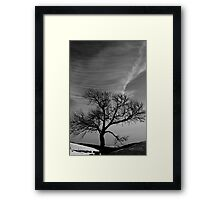 Lonely tree under great sky Framed Print