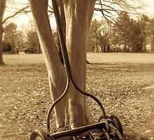 old lawnmower by Angie11
