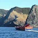 Cape Brett,  Bay of Islands,  New Zealand by Roy  Massicks