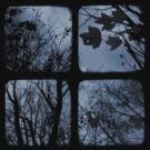Winter of Discontent - TTV by Kitsmumma