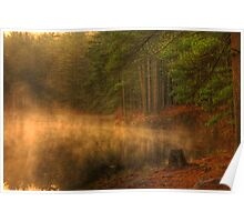 Misty Morning Forest Lake Poster
