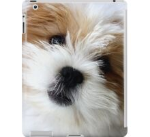 Daisy ~ Sugar and Spice iPad Case/Skin