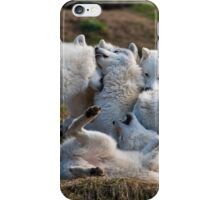 Playful Pack iPhone Case/Skin