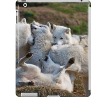 Playful Pack iPad Case/Skin