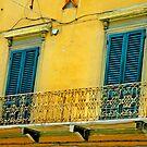 Yellow Italian Windows by Danielle Girouard