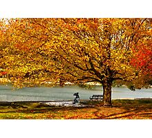 Golden maple warm me up  Photographic Print