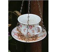 Birds Cup of Tea Photographic Print