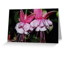 Fuchsia Twins Greeting Card