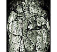 crumbling Photographic Print