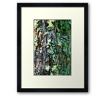 A Growing Community! Framed Print