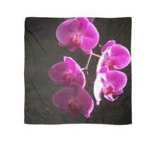 STRAND OF PINK ORCHIDS Scarf