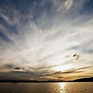 Sunset over Canberra by Peter Dor