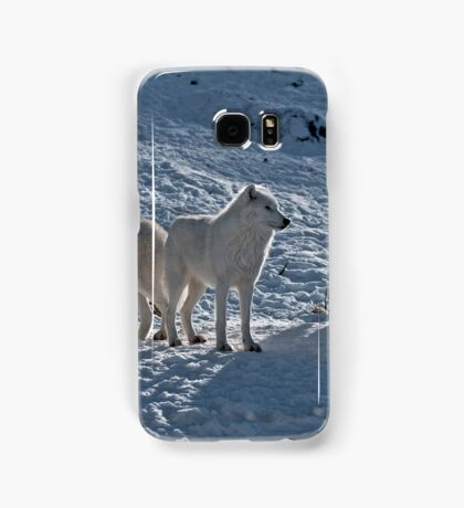 Arctic Wolves In Early Morning Samsung Galaxy Case/Skin