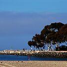 Landscape in Dana Point by loiteke