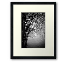 Blossoms of Spring Framed Print