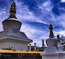 stupas. gangtok, sikkim by tim buckley | bodhiimages