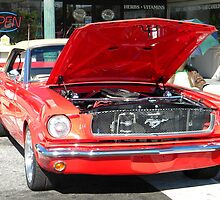 Classic Mustang by Jaclyn Hughes