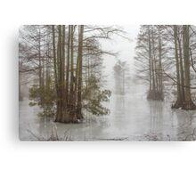 Frozen Cypress Swamp in Fog Canvas Print