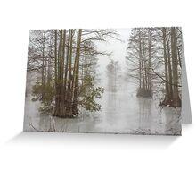 Frozen Cypress Swamp in Fog Greeting Card