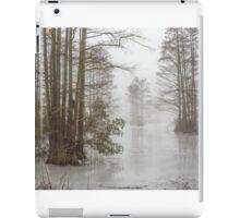 Frozen Cypress Swamp in Fog iPad Case/Skin