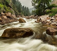 South St Vrain Canyon Portrait Boulder County CO by Bo Insogna