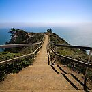 Muir Beach Overlook by Jenn Ramirez