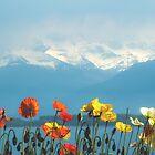 Swiss Flowers by Sol Noir Studios