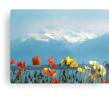 Swiss Flowers Metal Print